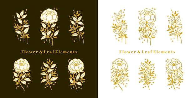 손으로 그린 빈티지 식물 모란, 장미 꽃, 꽃 잎 지점 라인 아트 요소 집합