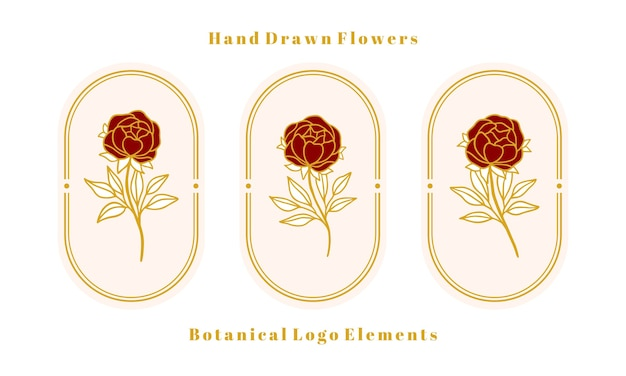 여성 로고 및 뷰티 브랜드에 대한 손으로 그린 빈티지 골드 식물 장미 꽃, 모란 및 잎 지점 요소 집합