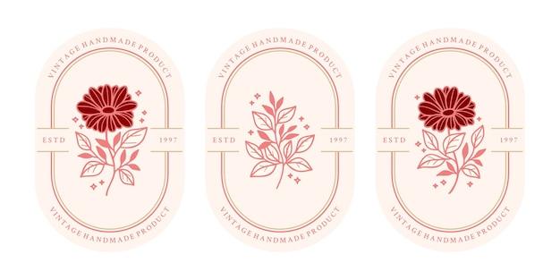 手描きのヴィンテージピンクの植物のデイジーの花と葉の枝要素のセット