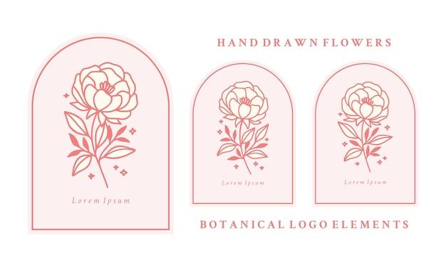 Набор рисованной старинный розовый ботанический пион цветок и элементы ветви листьев