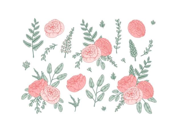 Набор рисованной элементов дизайна свадебной флористики