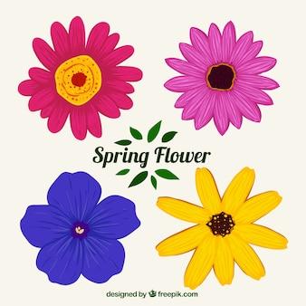 손으로 그린 색된 꽃 세트