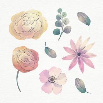 손으로 그린 수채화 꽃 세트