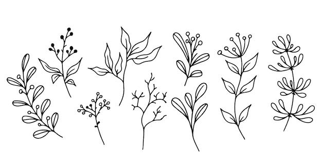 手描きの花の要素のセット落書き植物と枝デザインの大ざっぱな要素