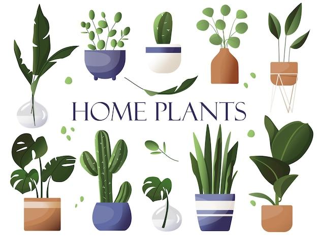 Набор домашних комнатных растений. тропические листья, цветочные горшки. иллюстрация в мультяшном плоском стиле.