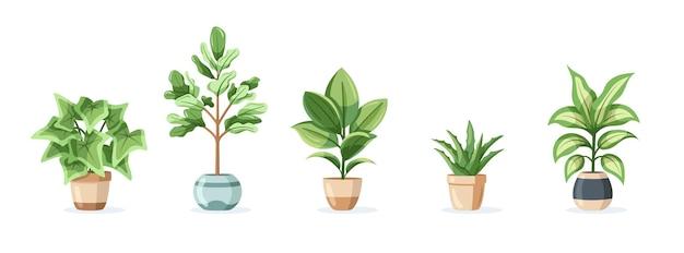 평면 스타일에 흰색 배경에 고립 된 냄비에 가정 식물의 집합