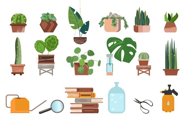 냄비에 집 식물의 집합입니다. 다육 식물, philodendron 및 ficus.
