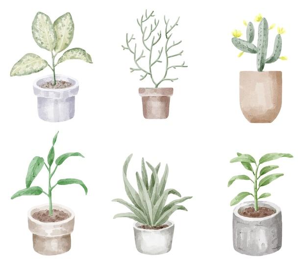 家の屋内と屋外の植物の水彩イラストのセット