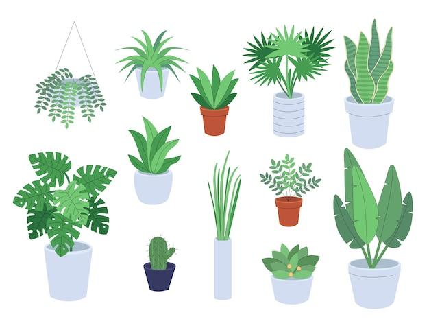 観葉植物屋内ガーデンフラットイラストのセット
