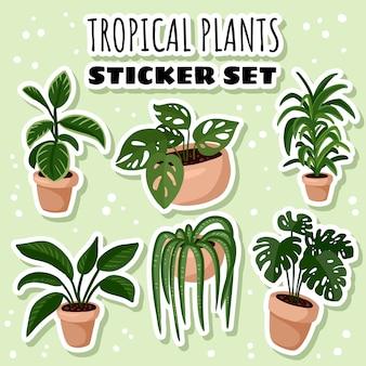 熱帯の鉢植え多肉植物のステッカーのセット。