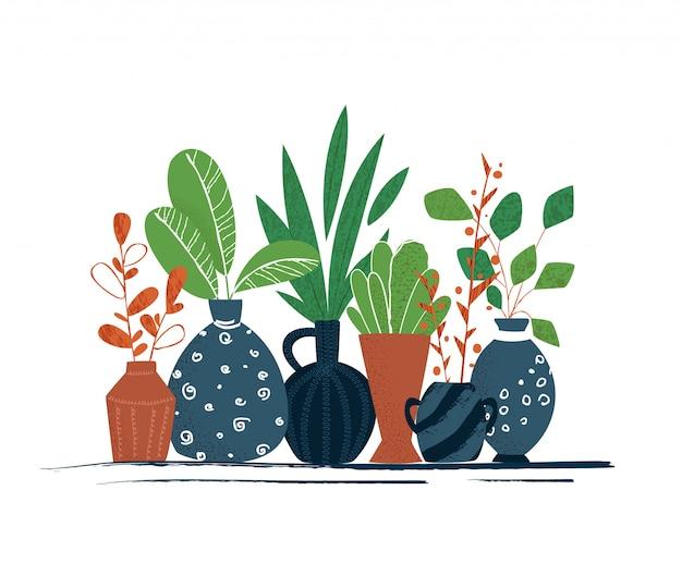 屋内庭の鉢植えな植物または家の花-白い背景で隔離されたアイテムのセット
