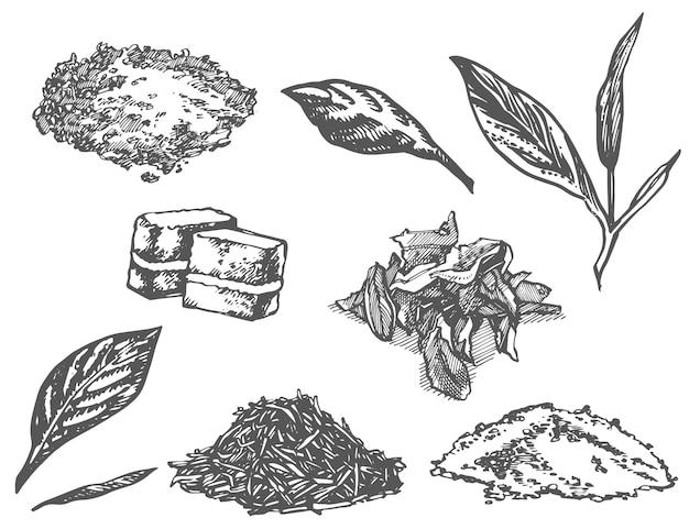 インク手描き茶注入器イラストベクトル手描きイラスト茶の儀式のセット
