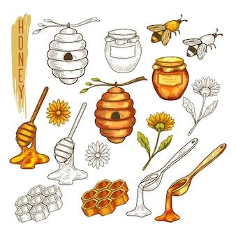Набор изолированных предметов пасеки или пчеловодства, аксессуар пчеловодства. эскиз пчелы или пчелы, соты и мед, ложка и ковшик, цветок и банка, ковшик и улей, палка и пчелиный воск, расческа.
