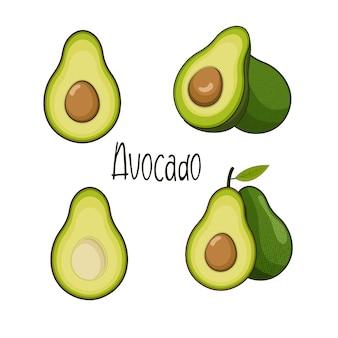 Набор изолированных фруктов авокадо вектор, авокадо иллюстрации мультяшном стиле