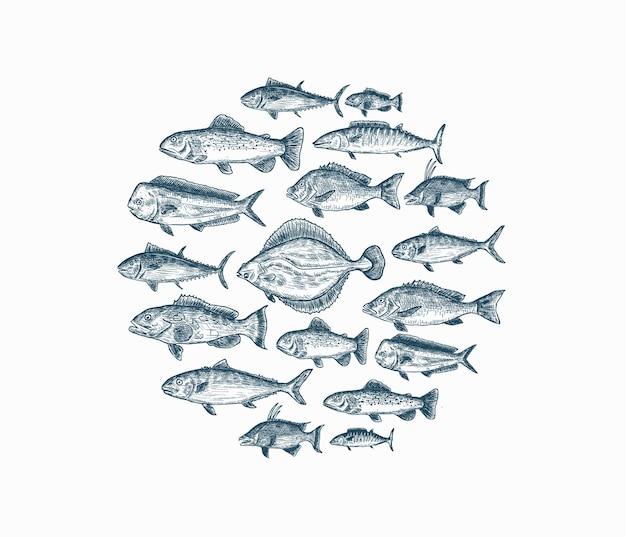 白い背景の上の孤立した青い手描きの魚のセット