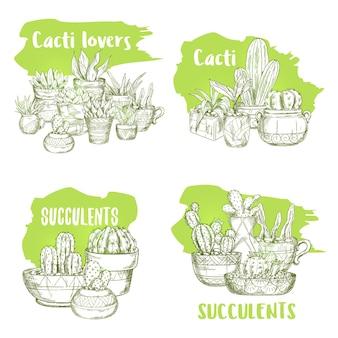 냄비에 선인장의 고립 된 녹색 스케치의 집합입니다. 손으로 그린 즙이 많은 식물 그림. 멕시코 선인장 또는 선인장, 사막 식물 인쇄.