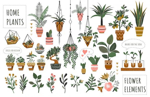 植木鉢の図に孤立した観葉植物のセット