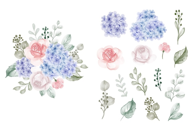 バラの水彩イラストと孤立したアジサイブルーのセット