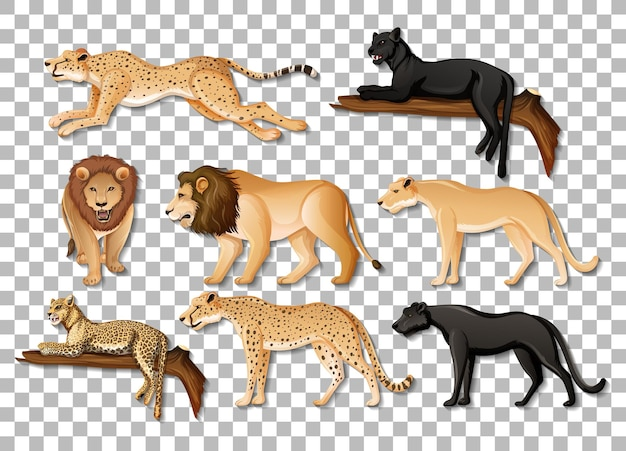투명 한 배경에 고립 된 아프리카 야생 동물의 집합