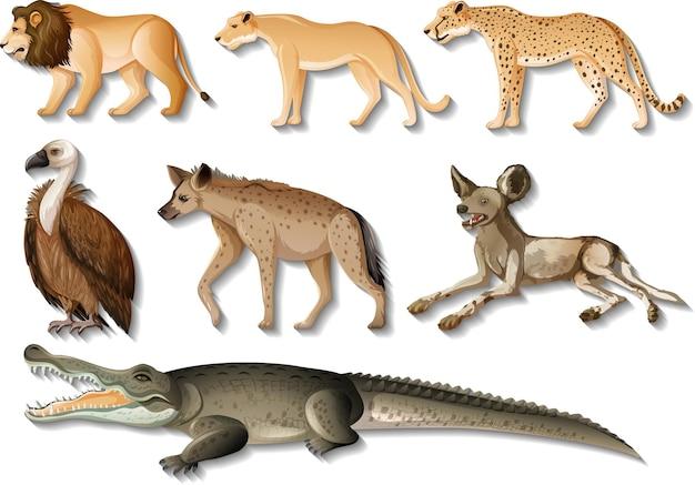 白い背景の上の孤立した野生アフリカ動物のセット