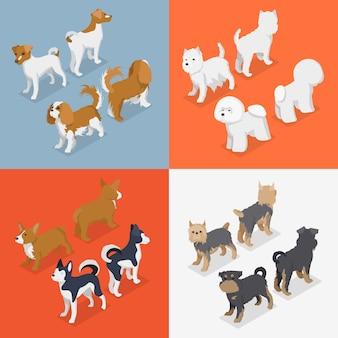 Набор изометрических маленьких пород собак