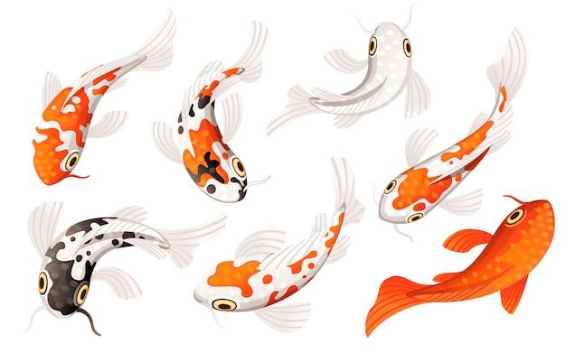 Набор карпа кои японский символ удачи удачи процветания иллюстрации шаржа