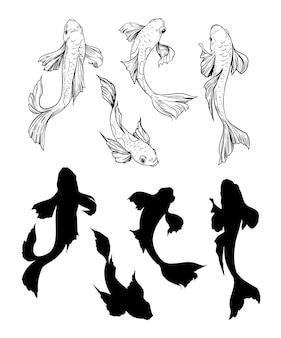 鯉のセットです。手描きのskrtch。ベクトルイラスト