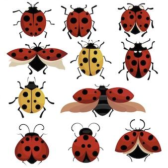 テントウムシのセットです。漫画の昆虫のコレクションです。カブトムシのイラスト。子供のための絵。