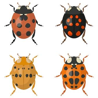 Набор божьих коровок. жуки разных цветов.