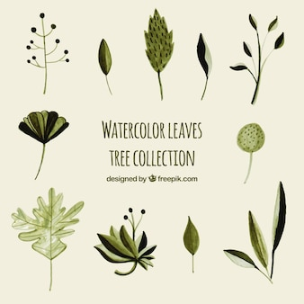 수채화 스타일에서 나뭇잎 나무의 집합