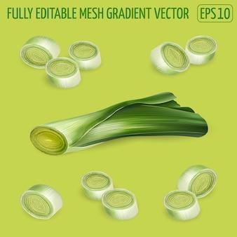 Набор композиций ломтиков лука-порея - рисунок свежих овощей. реалистичная иллюстрация.