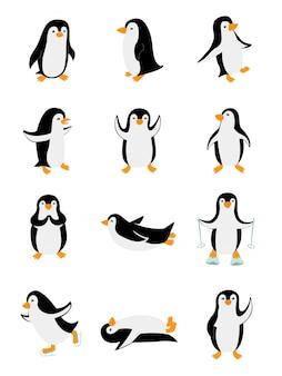 さまざまなポーズの小さなペンギンのセット。白い背景で隔離の変な動物。漫画のキャラクターのイラスト。動物園のクリップアート
