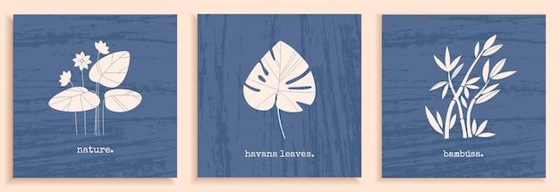 식물 꽃 잎과 추상적 자연 요소가 있는 질감 있는 흑백이 있는 최소한의 포스터 세트