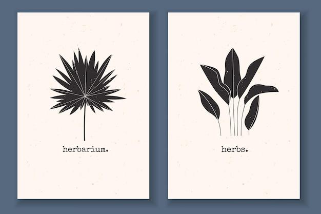 식물 열대 잎과 추상적 자연 요소가 있는 질감 있는 흑백이 있는 최소한의 포스터 세트