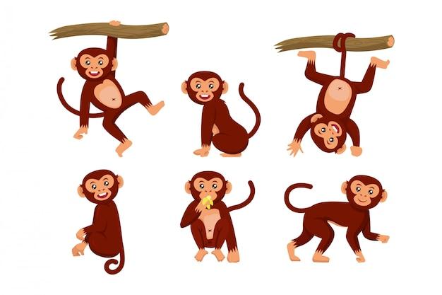 サルのさまざまなポーズのキャライラストのセット