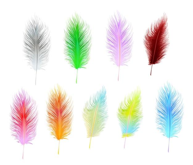 白い背景で隔離のマルチカラーベクトル羽のセット