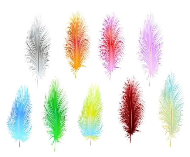 Набор разноцветных векторных перьев, изолированные на белом фоне