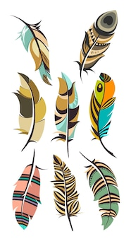 Набор разноцветных перьев на белом фоне.