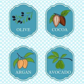 美容と化粧品-パッケージデザインテンプレートとエンブレム-オリーブ、アボカド、ココア、アルガンの天然成分とオイルのセット。図。