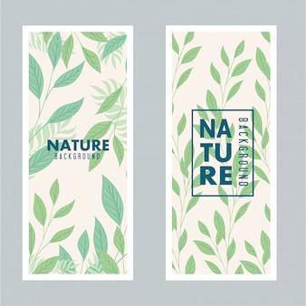 自然の背景、パステルカラーの葉と枝のセット