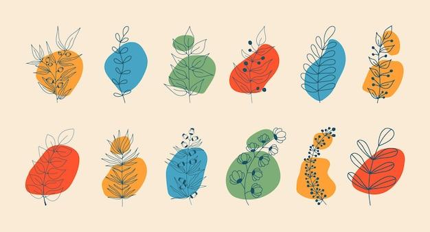 Набор элементов ботаника с кругами