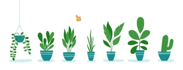 鉢植えのオフィス植物のセット。ベクトルイラスト