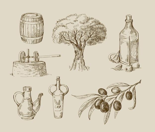 オリーブ、木、枝の手描きスケッチのセット