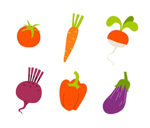 흰색 바탕에 빨간색과 보라색 색상의 유기농 야채 세트.