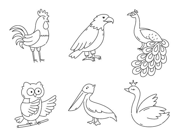 分離されたアウトライン鳥のセット