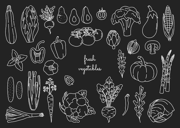 낙서 스타일에서 개요 야채 세트입니다. 흰색 윤곽선으로 손으로 그린 신선한 채식 음식 번들