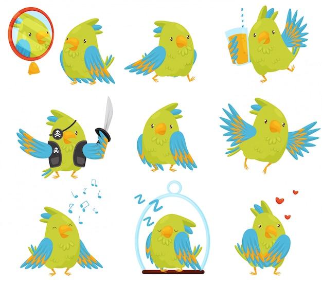 さまざまな状況でのオウムのセット。明るい緑と青の羽を持つかわいい鳥。面白い漫画のキャラクター