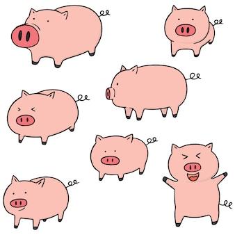 豚のセット