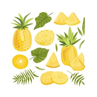Набор ананаса целиком и векторных иллюстраций ломтиков