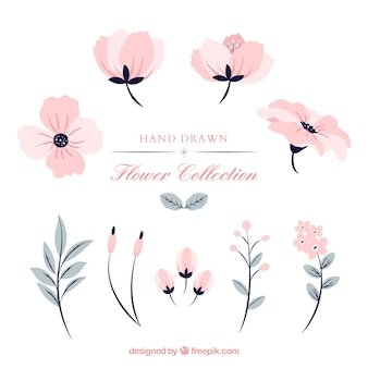 Set of pink flowers in hand drawn style